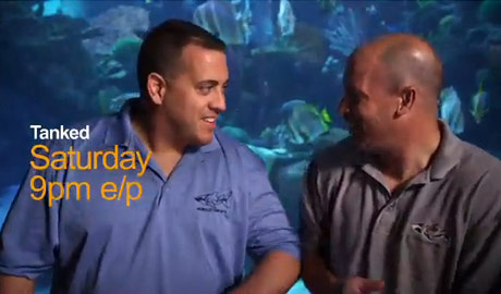 Walsh Teams up with Animal Planet for Tanked!